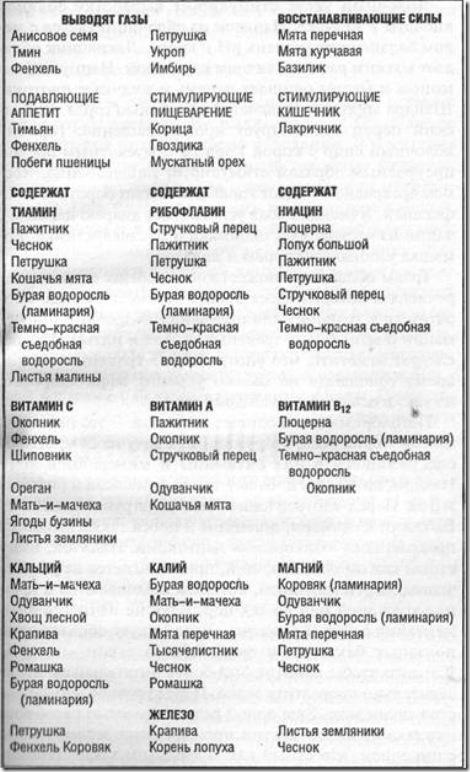 Таблица витаминов и семян